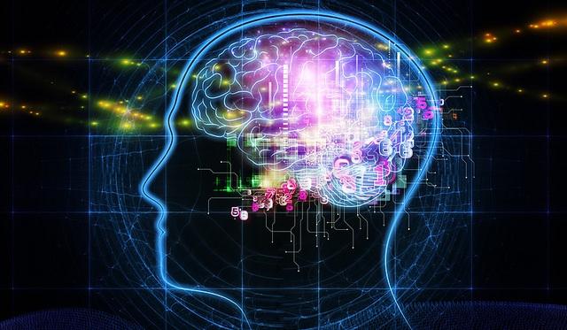 Mind Mapping correspond aux processus de notre cerveaux
