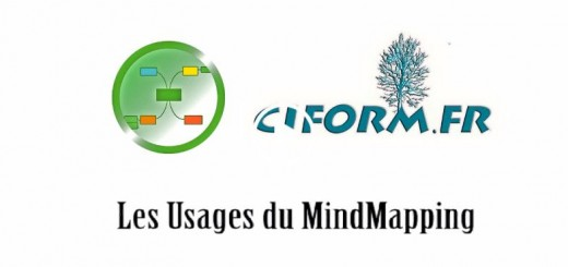 Usages professionnel du Mind Mapping